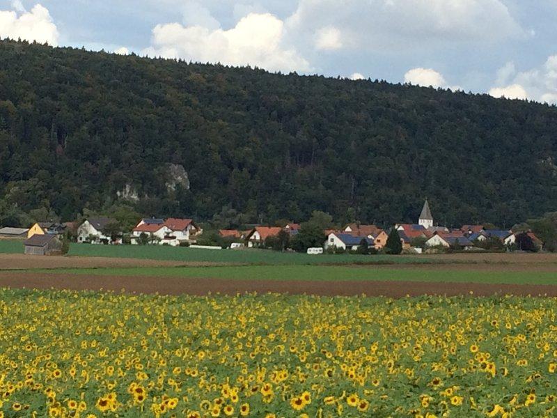 Our village Matting in an idyllic Danube loop