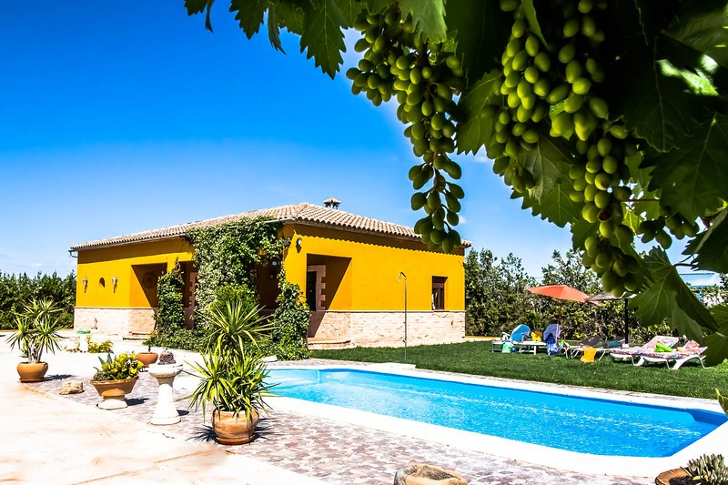 Seville countryside with private swimming pool, free wifi, air conditioning, vacation rental in Brenes