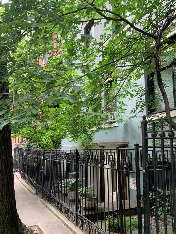 RARE Patio Garden open 1-bed Oasis Apartment in NOMAD ...