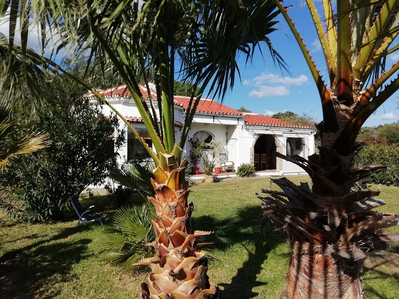 Nice house with terrace & Wifi, vacation rental in Estepona