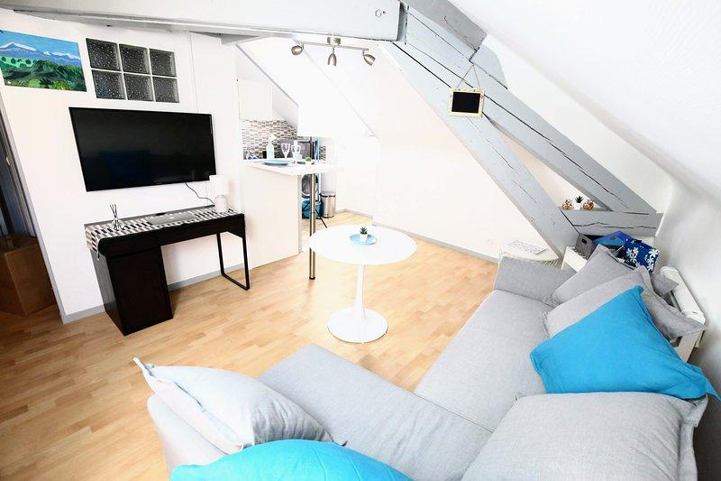 Le Grey - Duplex Confort en centre-ville, holiday rental in Pau