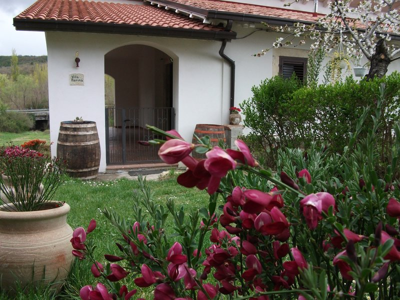 Bed & Breakfast La Ginestra, vacation rental in Bolognano