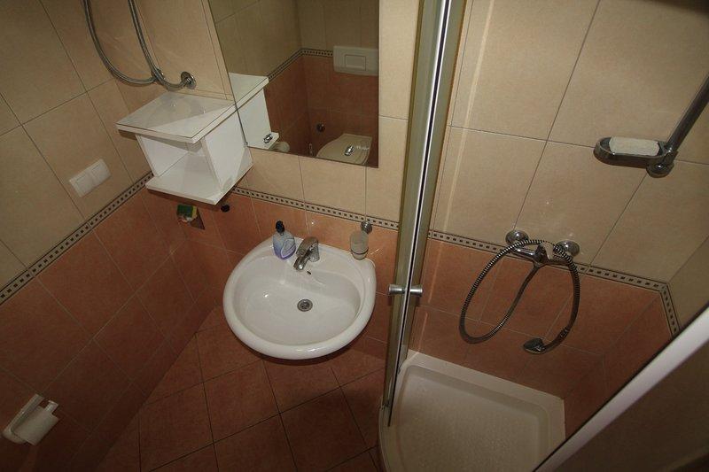 Prizemlje A1 (4 + 2): baño con inodoro