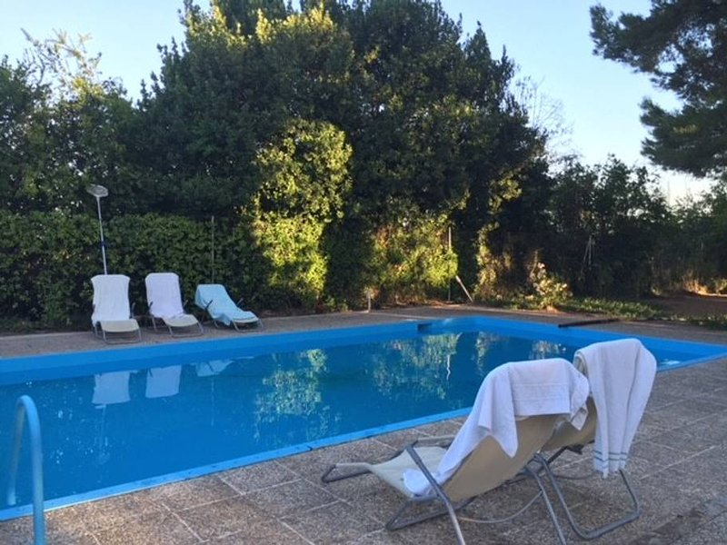 Big villa with swimming-pool & Wifi, holiday rental in Jumilla