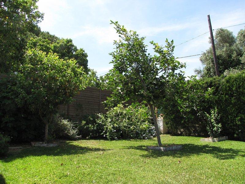 Parte del jardin