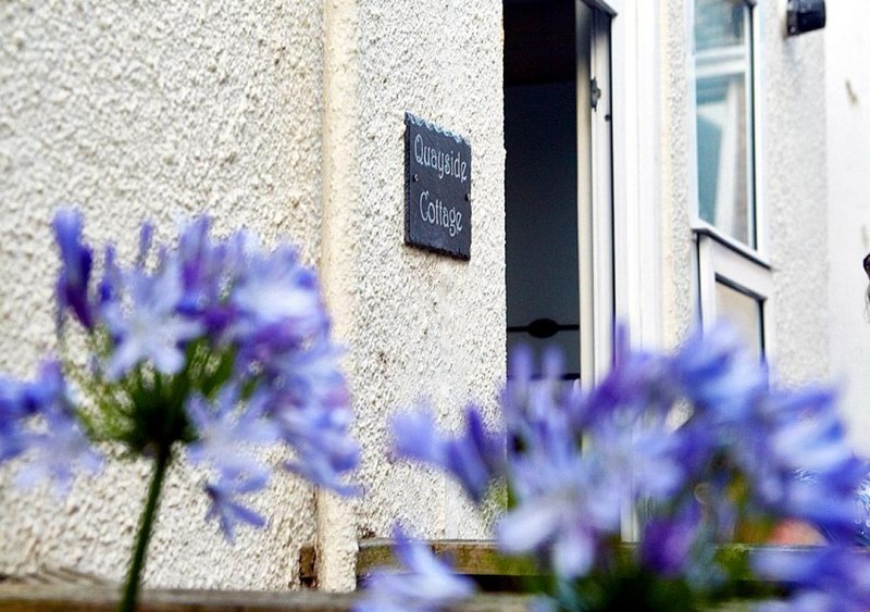 Quayside Cottage, holiday rental in Teignmouth