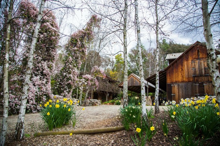 Lothlorien 'A Romantic Luxury Retreat in the Victorian High Country', vacation rental in Tawonga