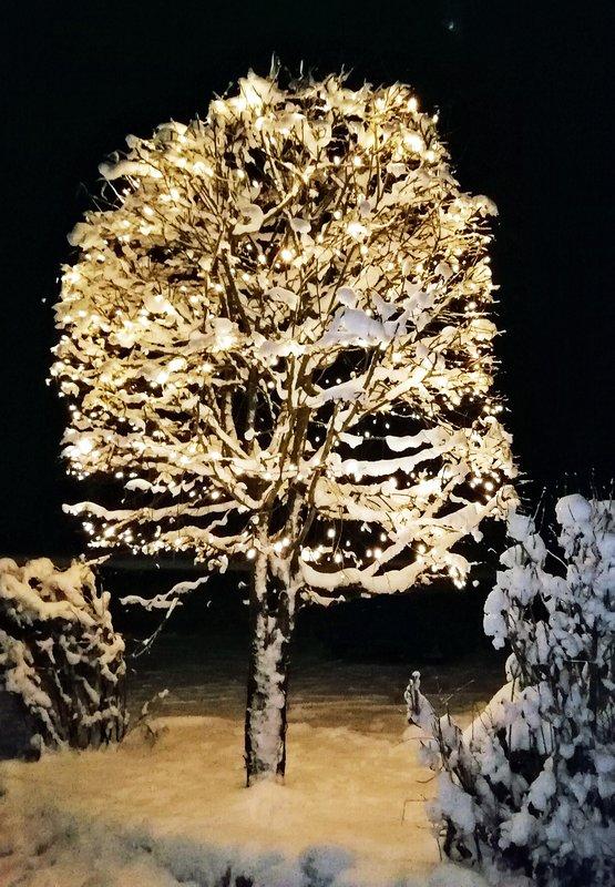 Luci invernali