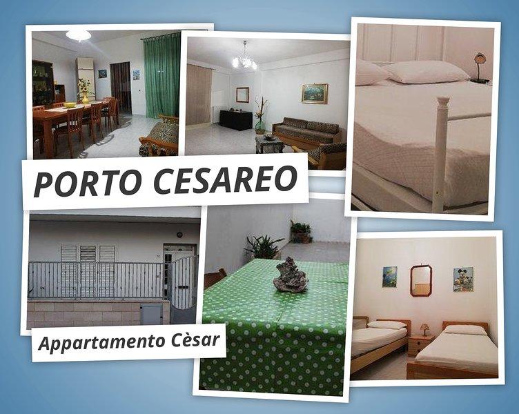 Big Apartment Cèsar Mono / Semi-detached