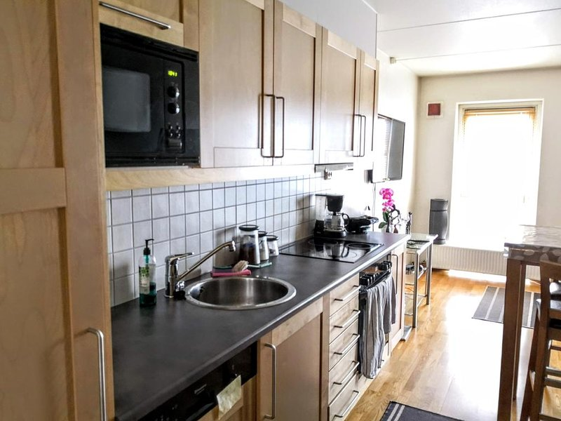 Central Modern City Apartment in Prime Location Lillestrøm, holiday rental in Lillestrom