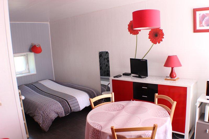 (Std82) Studio** Curiste 2 personnes 150 mètre Thermes St Roch Centre Ville, location de vacances à La Roche-Posay