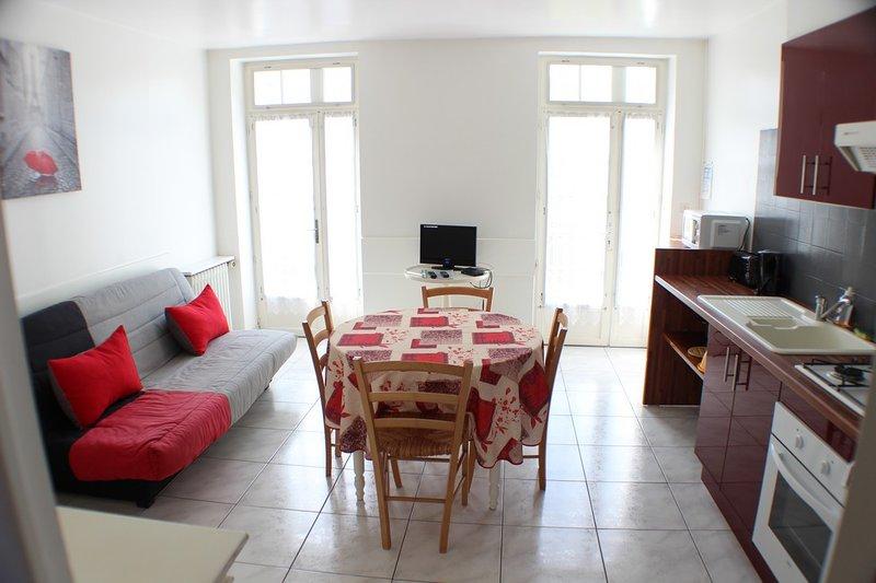 (Ap67) 150 m des Thermes St Roch location 2** pour Cure ou Vacances Centre Ville, location de vacances à La Roche-Posay