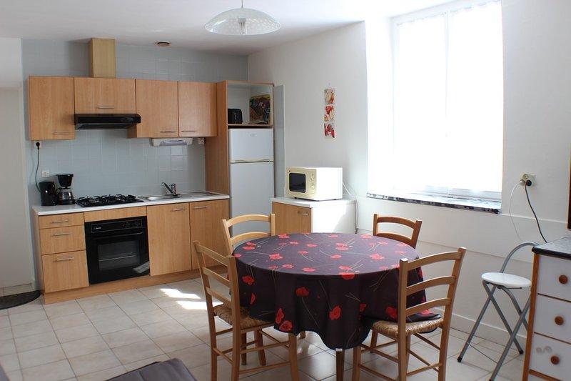 (Apt63) Appartement** Meublé Curistes 150m des Thermes de St Roch La Roche Posay, location de vacances à La Roche-Posay