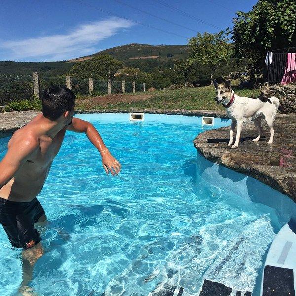 A Porteliña relax y naturaleza todo en uno., vakantiewoning in Combarro