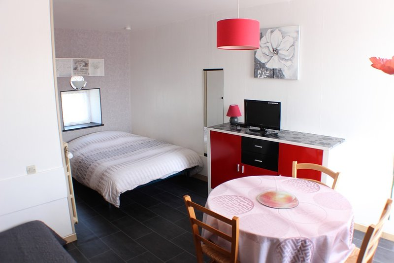 (Std84) Studio** Meublé 2 personnes Curistes Proche des Thermes La Roche Posay, location de vacances à La Roche-Posay