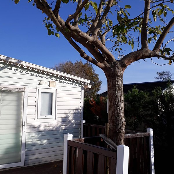 superb location for a wonderful holiday, vakantiewoning in Marennes