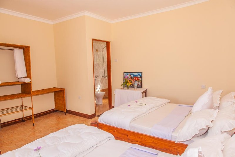 Furaha Lodge  Twin bed Room with Balcony 1, vacation rental in Arusha