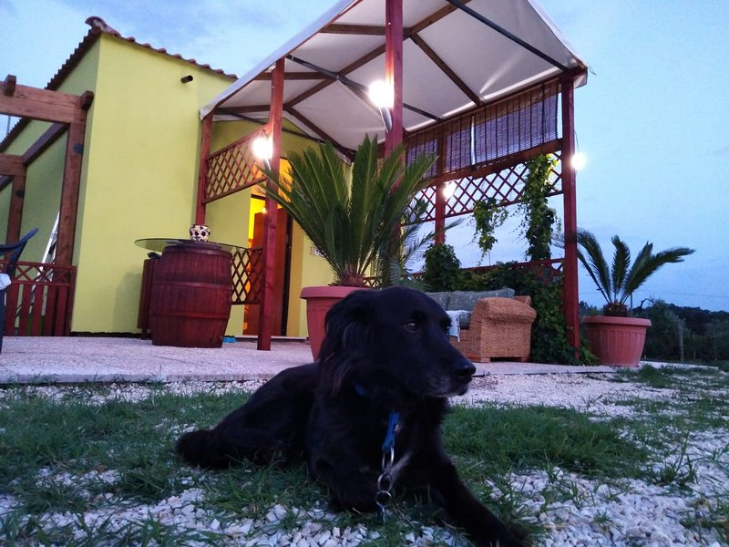 Ciliegio, location de vacances à Monterotondo