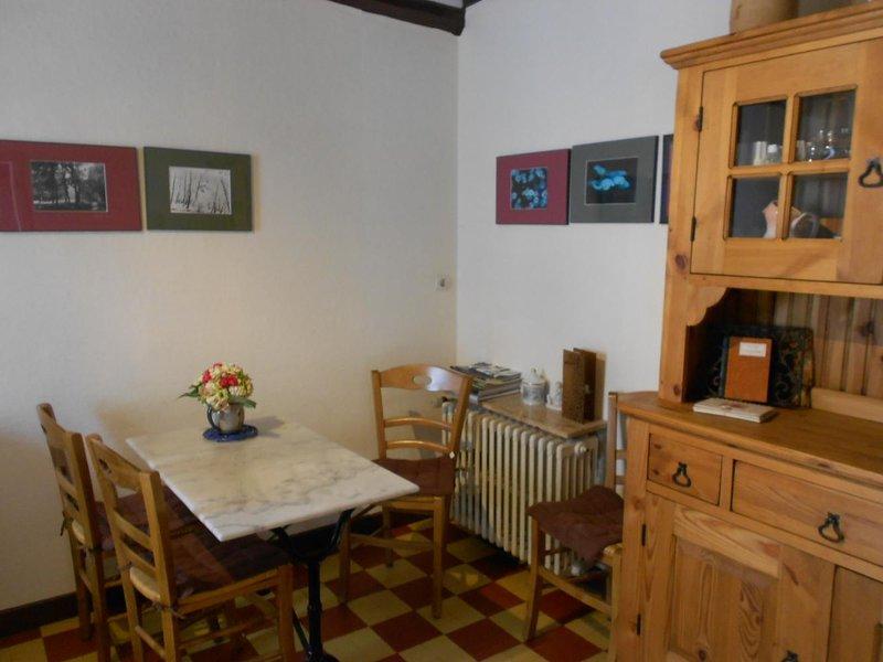 Beautiful house with garden & Wifi, location de vacances à Germigny-des-Pres