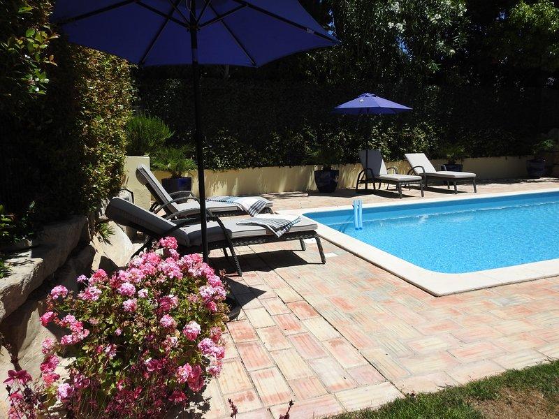 Villa Serene with Private Pool, location de vacances à Vale do Garrao