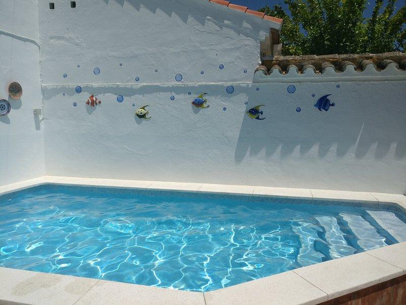 Spacious villa with swimming-pool, holiday rental in La Rambla