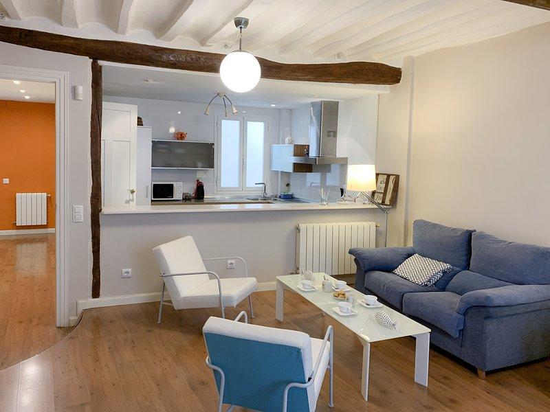 Amplio piso con encanto ¡Situación inmejorable! Casco Antiguo · Wifi · Tapas, alquiler de vacaciones en Logroño