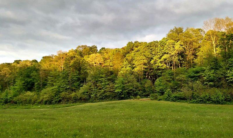 Altenbrauch Farm - Camping in the Hocking Hills – semesterbostad i McArthur