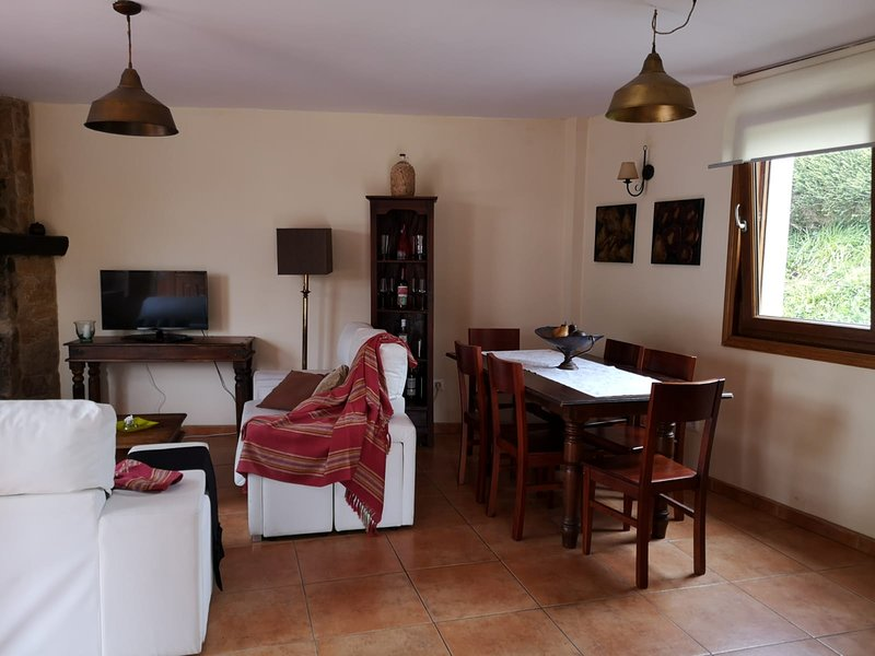 Spacious house with garden, holiday rental in Mino