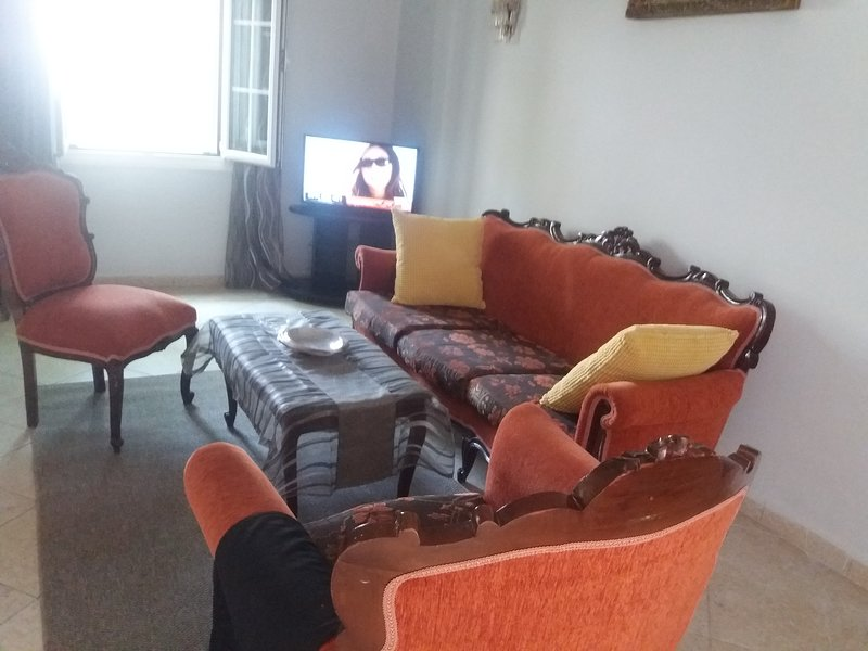 LARGE AND MODERN SALOON WITH PLASMA T.V