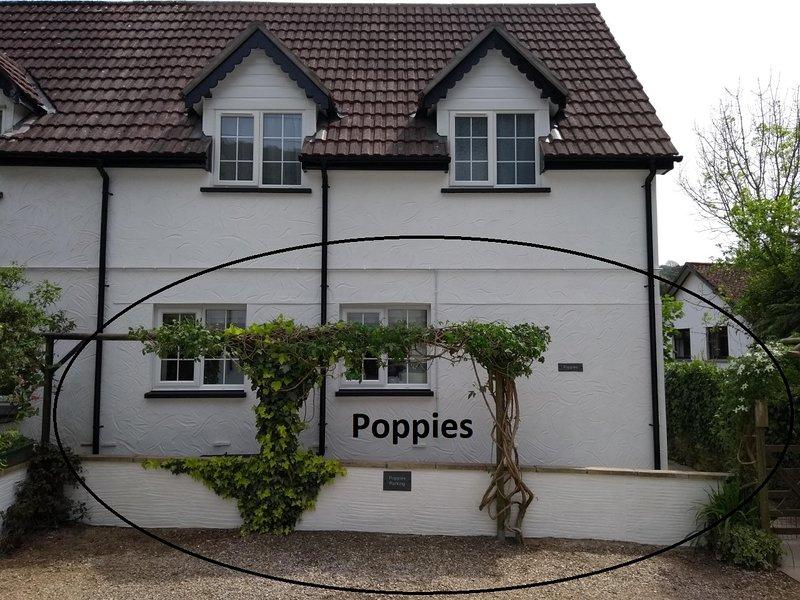 Poppies, Ferienwohnung in Ilfracombe