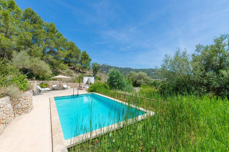 PUIG DE GARRAFA 6 - Villa for 6 people in Andratx, holiday rental in Peguera