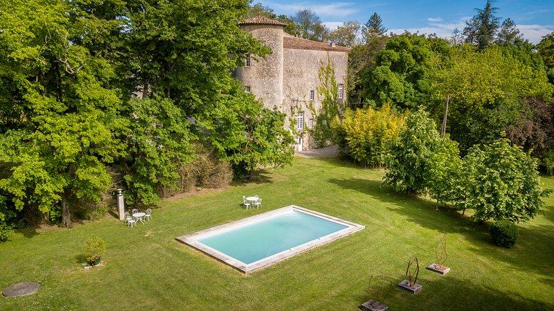 Plaigne Chateau Sleeps 29 with Pool - 5678528, casa vacanza a Gaudies