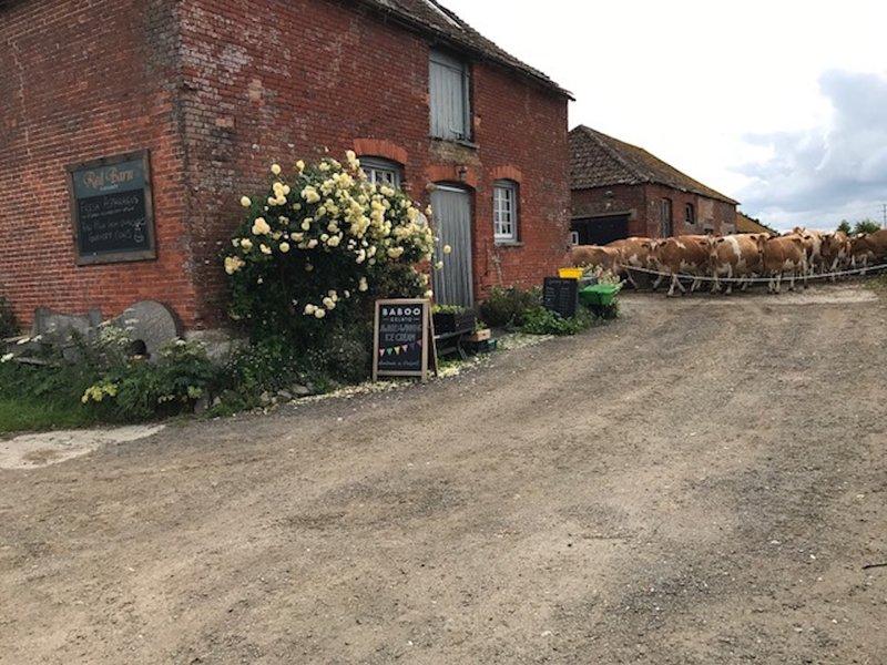 Red Barn Farm Shop - 40 metros de Farm House