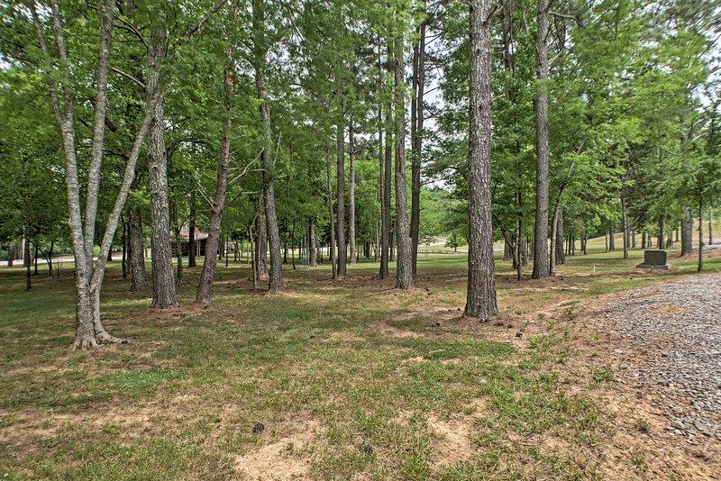 Lush woods await you.