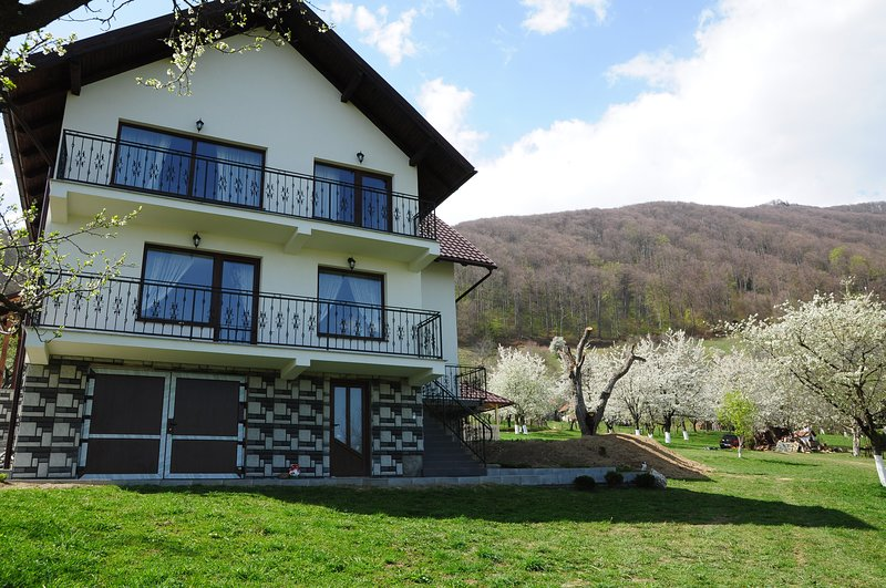 Orchard Villa, vacation rental in Rucar