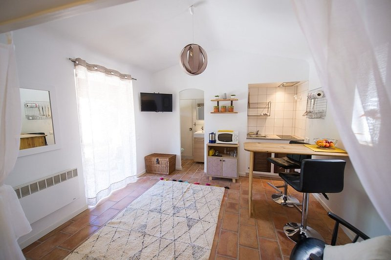 Cocody cottage, holiday rental in Plan de la Tour