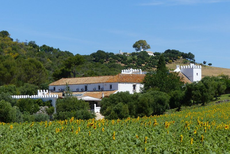 El Cortijo de Arcos, Zumacal, holiday rental in Arcos de la Frontera