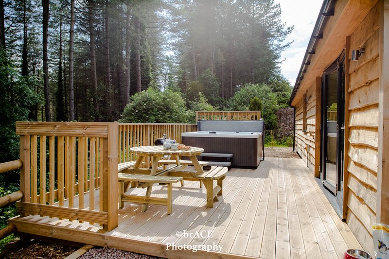 Tree Tops Lodge, Clements End, Coleford - HOT TUB, holiday rental in Llandogo