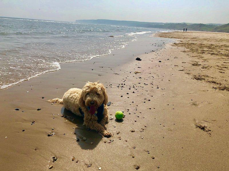 Eden na praia de Filey