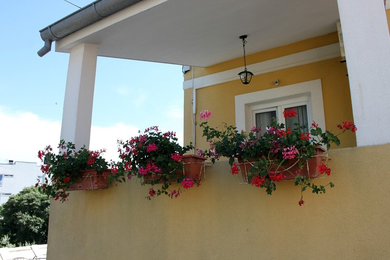 Darko - 100m from the sea & comfortable: A1(4) - Sali, holiday rental in Sali