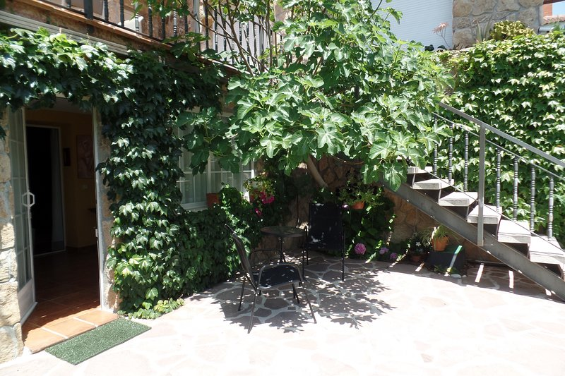 Amazing apartment with terrace, holiday rental in Manzanares el Real