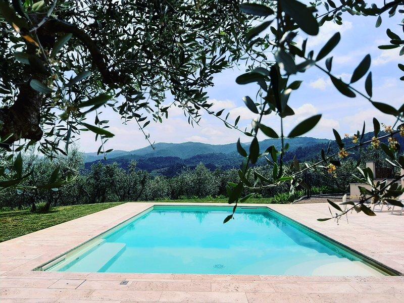 Villa RoseDelChianti, amazing country & cooking, holiday rental in Ponte Agli Stolli