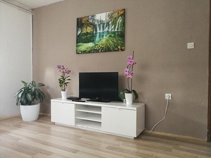Two bedroom apartment Smoljanac, Plitvice (A-14979-b), location de vacances à Dreznicko Seliste