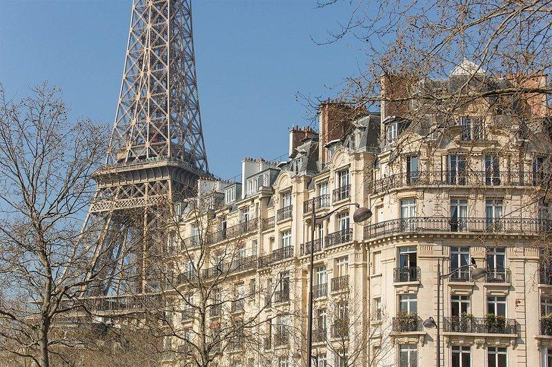 A classic Parisian winter view!