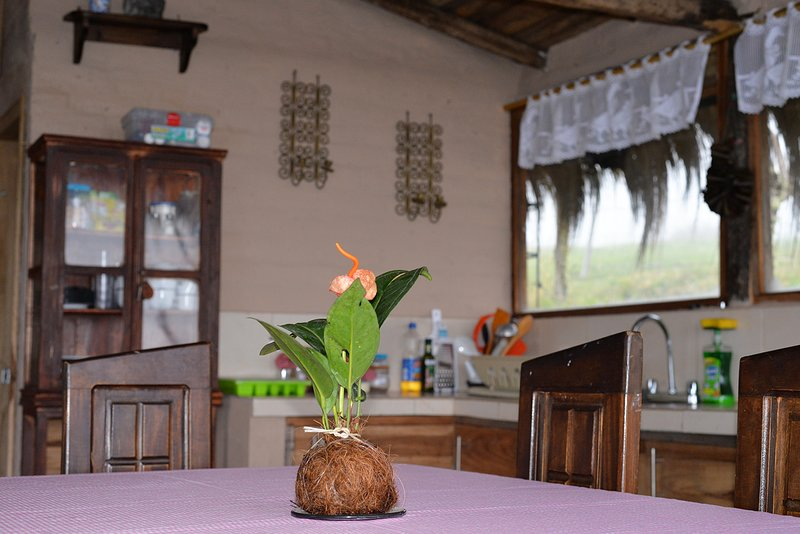 Cabaña Chucuri, location de vacances à Napo Province