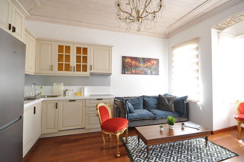 stylish apartment balat downtown, holiday rental in Gaziosmanpasa