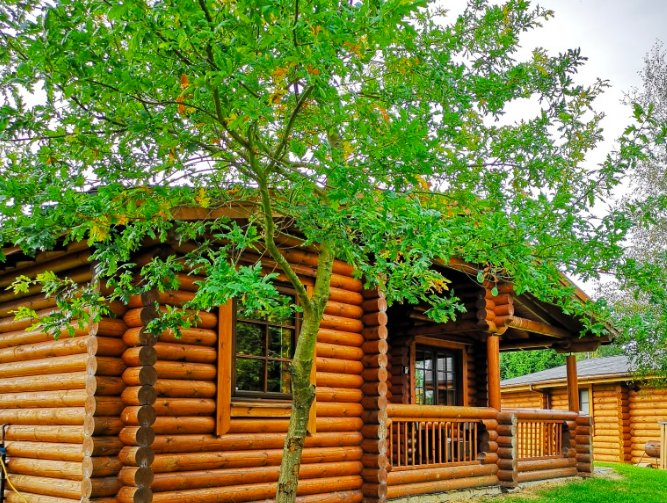 Hadrian Cabin