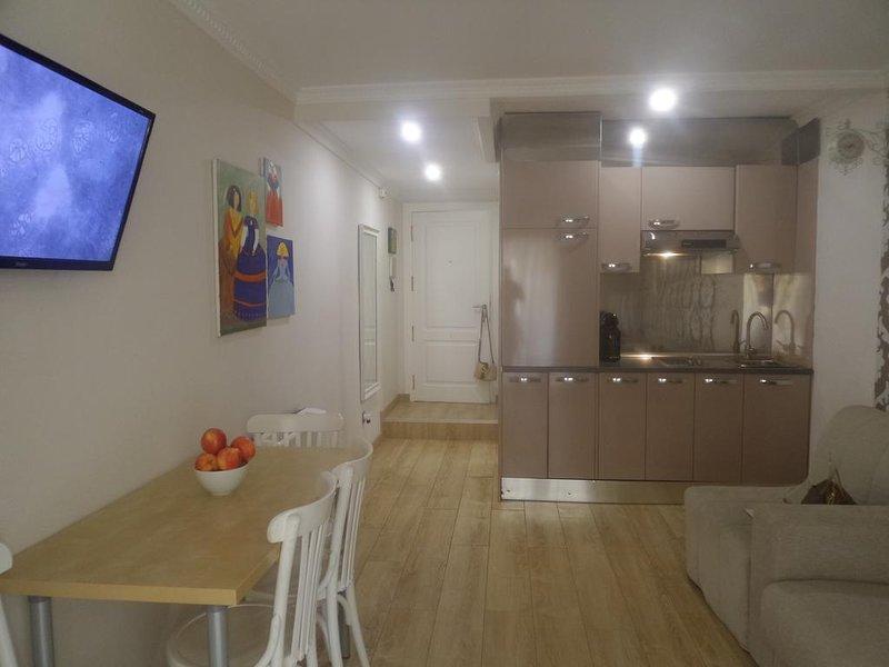 Nice studio with balcony & Wifi, holiday rental in San Isidro de Albatera