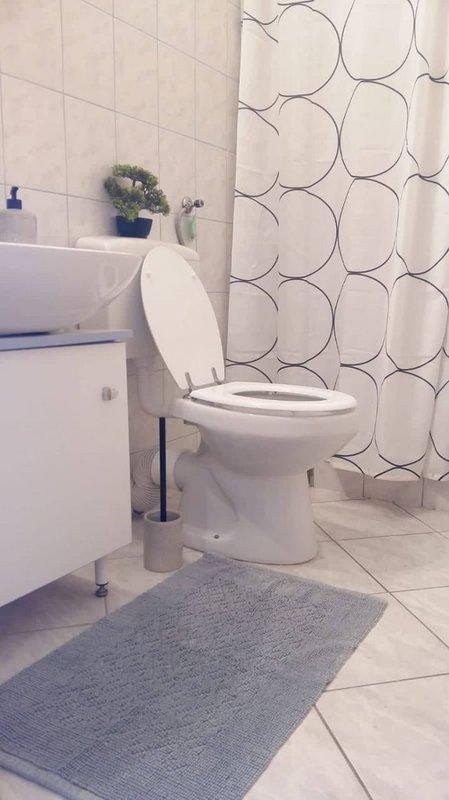 A1 (2 + 2): bagno con wc