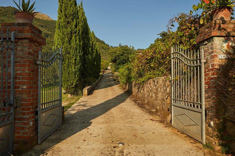 La Gianna Farmhouse - Tuscany, vacation rental in Nocchi